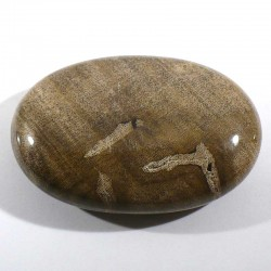Galet de massage en bois fossile 6cm