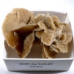 Rose des sables du Sahara - boite de collection 6cm