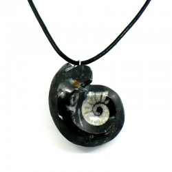 pendentif fossile en goniatite noir