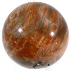 boule en bois fossile 5cm