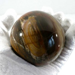 boule en bois fossile de Madagascar 7cm
