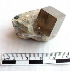 Pyrite de collection en cube