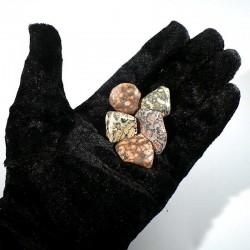 Jaspe léopard du Mexique - pierres roulées