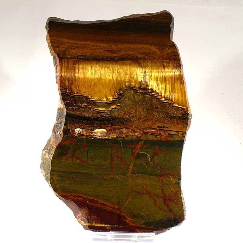 Plaque de Marra Mamba d'Australie - stromatolites - 2,7 Ga