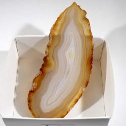 Agate marron du Brésil - boite de collection 6cm