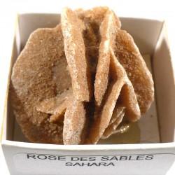 Rose des sables du Sahara - boite de collection 4cm